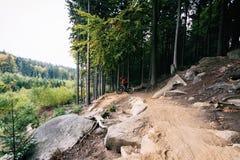 Motorista de la montaña que completa un ciclo en sola pista en bosque del otoño imagen de archivo libre de regalías