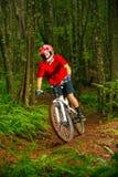 Motorista de la montaña que monta abajo de Forest Trail Foto de archivo libre de regalías