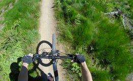 Motorista de la montaña que monta abajo en rastro limitado Foto de archivo libre de regalías