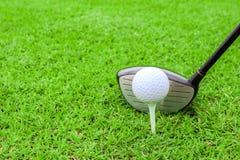 Motorista do clube da bola do T de golfe no curso da grama verde que prepara-se ao sho Foto de Stock