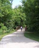 Motorista en el camino alineado árbol de la bici Foto de archivo libre de regalías