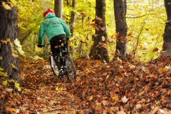 Motorista Forest Downhill Autumn de la bici de montaña imagenes de archivo
