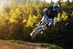 Motorista Forest Downhill Autumn de la bici de montaña imagen de archivo