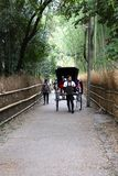 Motorista japonês do riquexó que leva um par Foto de Stock