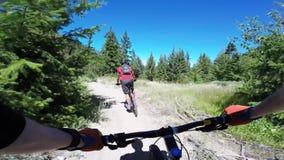 Motoristas biking la bici de montaña del montar a caballo en el camino forestal peligroso en el paisaje de la naturaleza del cnyo metrajes
