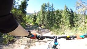 Motoristas extremos del deporte que montan la bici de montaña en camino peligroso del bosque en paisaje del barranco de Freund en almacen de metraje de vídeo