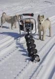 Motorowy świder dla łowić w śniegu obrazy stock