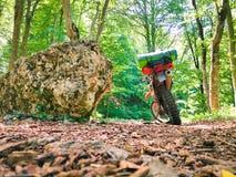 Motorrad, das im Wald steht lizenzfreies stockfoto