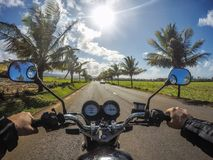 Motorrad-Fahrt mit Kokosnuss-Bäumen Bel Ombre Mauritius Stockfoto