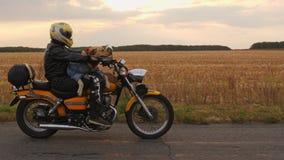 Motorrijder met een hond die een motorfiets berijden stock footage