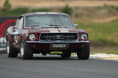 Motorsport 1967 Mustang Royalty Free Stock Image
