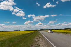Motorway behind which the blue sky with clouds. Over the field with yellow flowers stock image