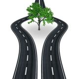 Motorway lanes bypassing a tree. Parallel motorway lanes parting and bypassing a tree Stock Images