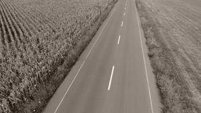 Motorway seen from above. Highway, view from above, fields around stock video