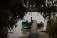 Motoscafi dal pilastro nel delta di Danubio Fotografie Stock Libere da Diritti