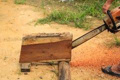 Motosega di legno di sawing dell'uomo Fotografia Stock