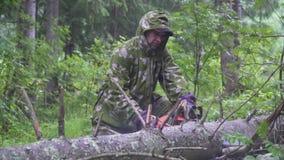Motosierra del árbol del corte del hombre almacen de video