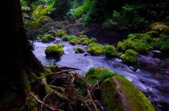 Mototaki River, Japan. Stock Photo
