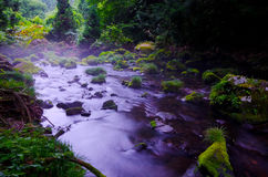Mototaki River, Japan. Royalty Free Stock Photos