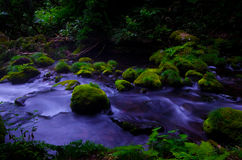 Mototaki River, Japan. Stock Image