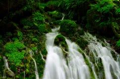 Mototakihukuryuusui Falls, Japan. Royalty Free Stock Images