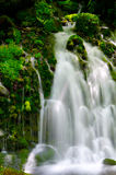 Mototakihukuryuusui Falls, Japan. Royalty Free Stock Image