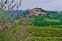 Motovun, Istria, Croatia, Europe. The Medieval Castle and Village of Motovun, Istria, Croatia Royalty Free Stock Photos