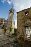 Motovun, Istria, Croatia. The medieval city of Motovun on the Istria peninsula in Croatia stock images