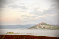 Motovun medieval village on a hill above vineyards in Istria, Croatia. Early morning fog in the valley royalty free stock images