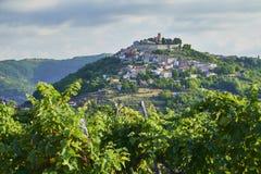 Motovun town, istria. Motovun/Montona is a medieval town in central Istria, Croatia royalty free stock photos