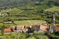 Motovun village in Croatia, Europe Royalty Free Stock Image