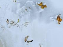 Motriz do inverno Imagem de Stock
