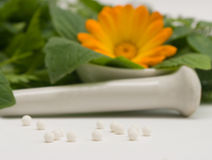 Motriz homeopáticos Fotos de Stock