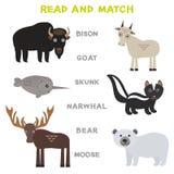 Mots d'enfants apprenant la fiche de travail de jeu lue et le match Jeu éducatif d'animaux d'orignaux drôles de Bison Goat Skunk  Photographie stock libre de droits