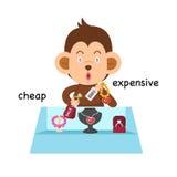 Motsatt billigt pris och dyr illustration royaltyfri illustrationer