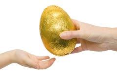 motta för ägg Royaltyfria Bilder