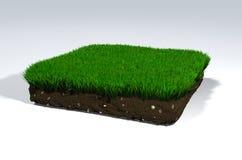 Motte de terre de sol Photo libre de droits