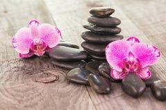 Mottenorchideen und schwarze Steine auf verwitterter Plattform Stockbild