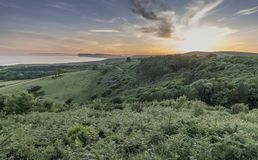 Mottistone Common, Isle of Wight Royalty Free Stock Photo