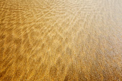 Mottled Beach Texture Royalty Free Stock Image