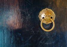 Mottled and brass door knocker Stock Photography