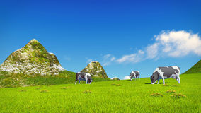 Mottled cows graze on alpine meadow. Farm landscape with a few mottled dairy cows grazing on a verdant alpine meadow at sunny day. Mountain peaks on the royalty free illustration