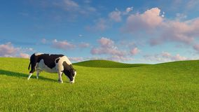 Mottled dairy cow graze on green pasture. Single mottled dairy cow graze on a green pasture under blue cloudy sky at spring day. Realistic 3D illustration was vector illustration