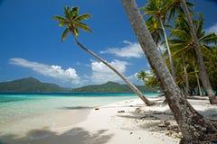 Motu海岛在塔希提岛 免版税库存照片