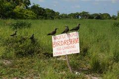 Motu Tabu Islet. Motu Tabu Birds Islet. Christmas Island, Kiribati stock image
