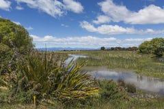 Motueka landskap nära Abel Tasman National Park, södra ö, Royaltyfri Foto