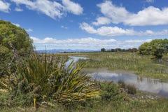 Motueka landskap nära Abel Tasman National Park, södra ö, Arkivbilder