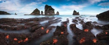 Motukiekie海湾点 一个狂放,坚固性自然场面的长的曝光从新西兰的南岛西海岸的  免版税库存图片
