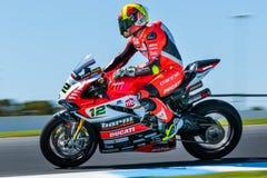 017 MOTUL FIM世界超级摩托车冠军 免版税库存图片