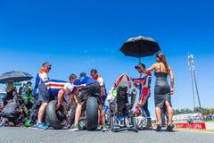 017 MOTUL FIM世界超级摩托车冠军 免版税图库摄影